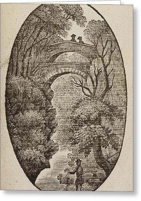 Devil's Bridge In Cardiganshire Greeting Card