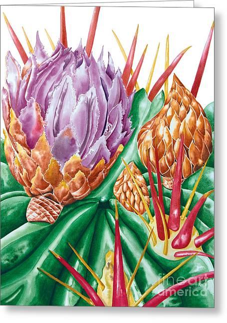 Devil's Tongue Cactus Flower Greeting Card
