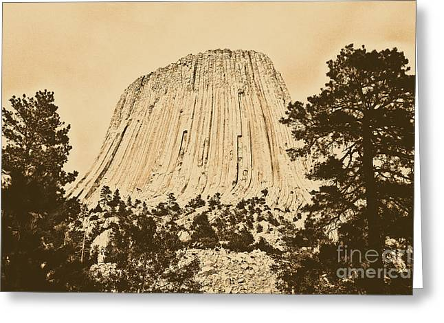 Devils Tower National Monument Between Trees Wyoming Usa Rustic Greeting Card by Shawn O'Brien