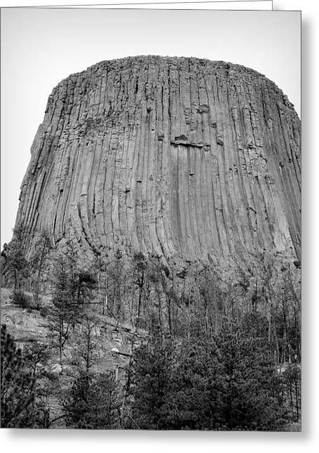 Devils Tower National Monument Bw Greeting Card by Elizabeth Sullivan