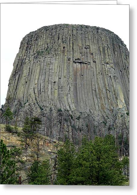 Devils Tower National Monument Greeting Card by Elizabeth Sullivan