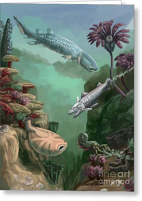 Devonian Period Greeting Card by Spencer Sutton