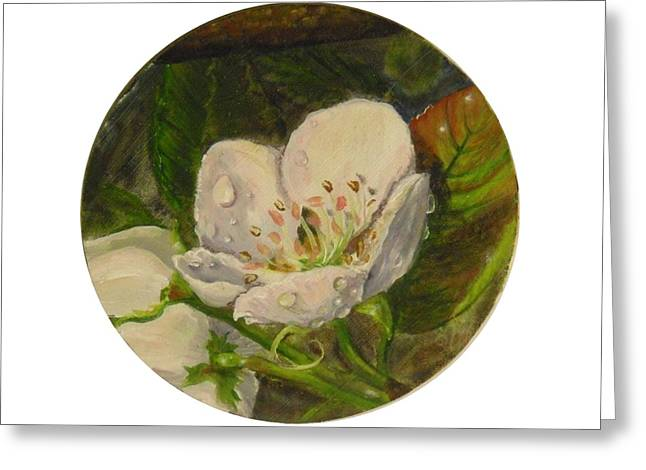 Dew Of Pear's Blooms Greeting Card