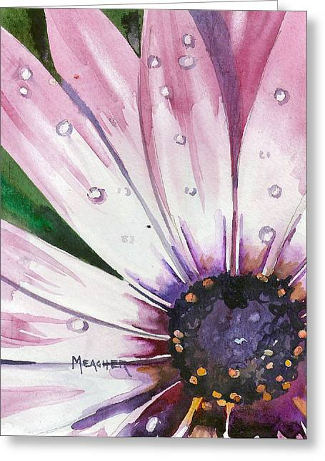 Dew On A Daisy Greeting Card by Spencer Meagher