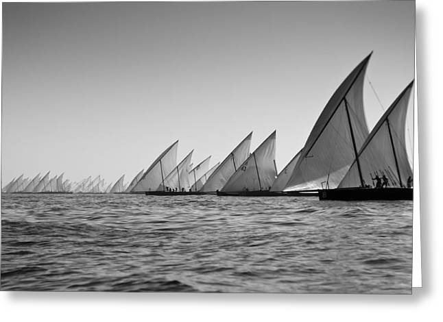 Dhow Race Start Greeting Card by Chris Cameron