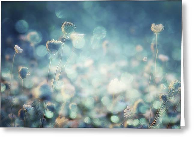 Diamonds Greeting Card by Stefan Eisele