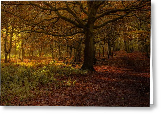 Did Someone Say Autumn? Greeting Card