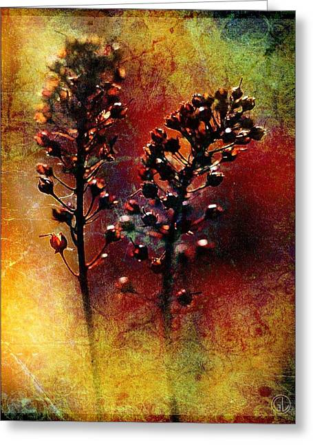 Difference Greeting Card by Gun Legler