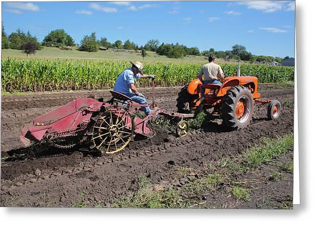 Digging Potatoes Greeting Card by Rural America Scenics