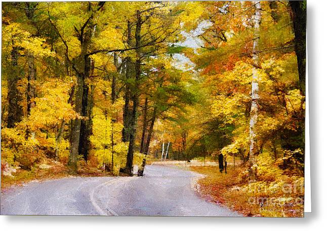 Fall Colors Greeting Card by David Perry Lawrence