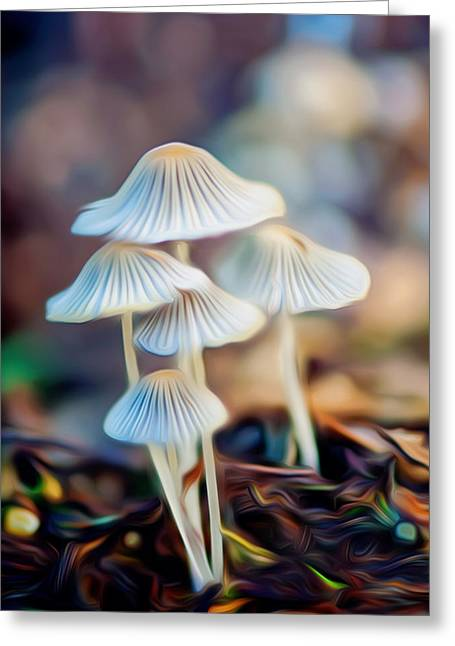 Digital Art Mushrooms Greeting Card by Tammy Smith