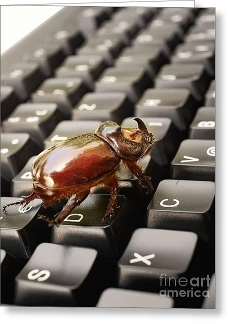 Digital Bug Greeting Card by Sinisa Botas