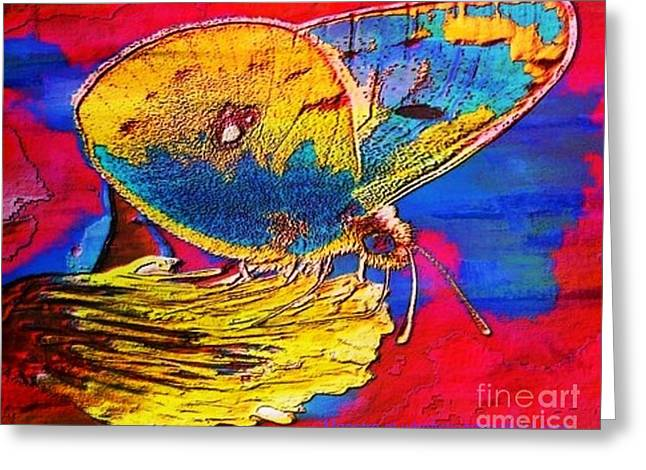 Digital Mixed Media Butterfly Greeting Card