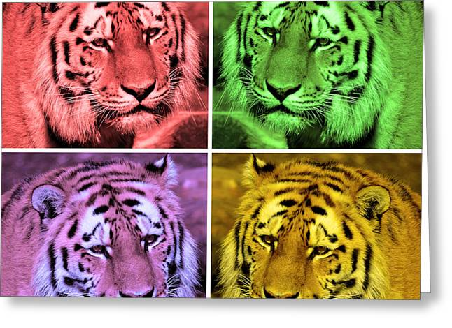 Digital Paint Of Tigers Greeting Card by Tommytechno Sweden