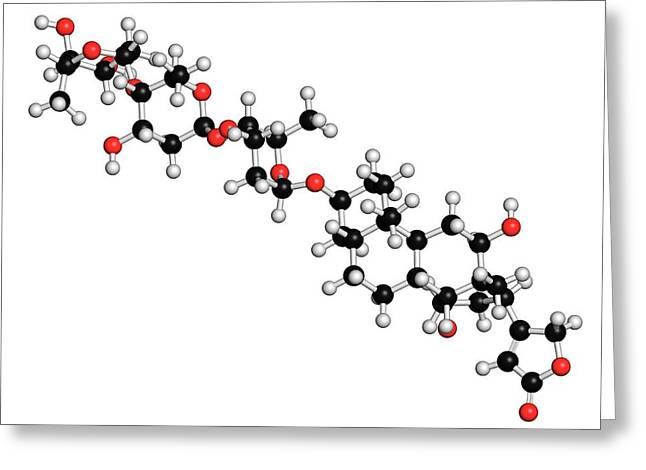 Digoxin Heart Failure Drug Molecule Greeting Card by Molekuul