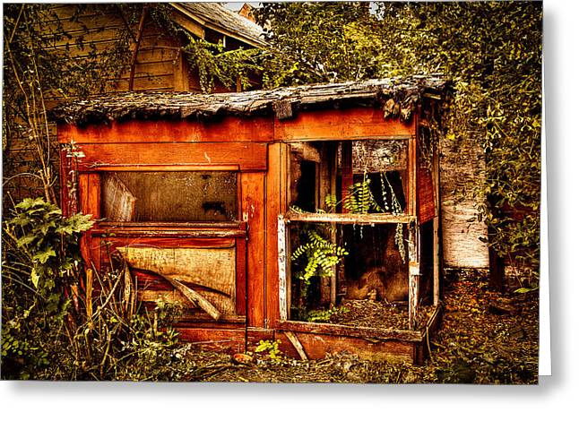 Dilapidated Playhouse - Memories Intact Greeting Card by David Patterson