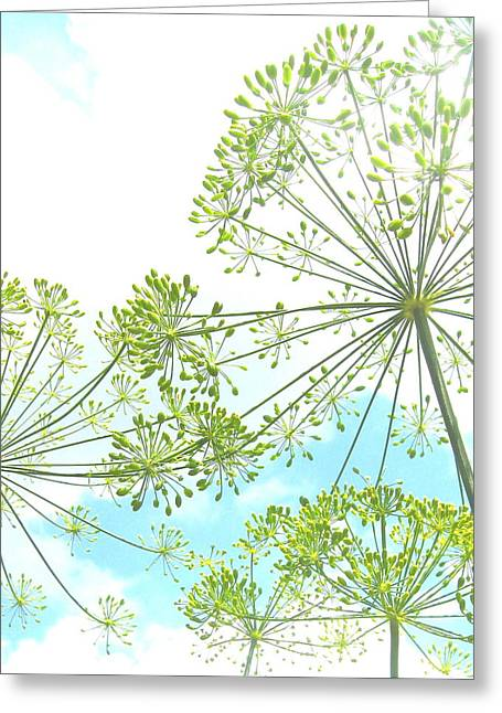 Dill Garden Greeting Card