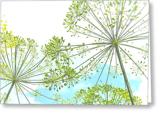 Dill Garden Greeting Card