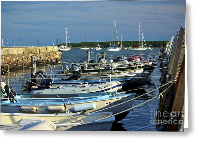 Dingy's Of Mattapoisett  Greeting Card