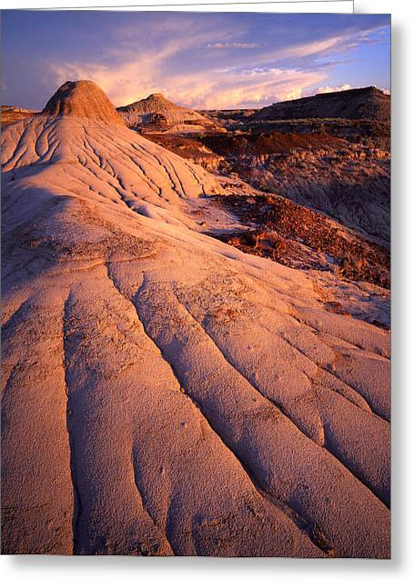 Dinosaur Dunes Greeting Card