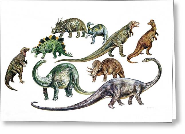 Dinosaurs Greeting Card by Deagostini/uig
