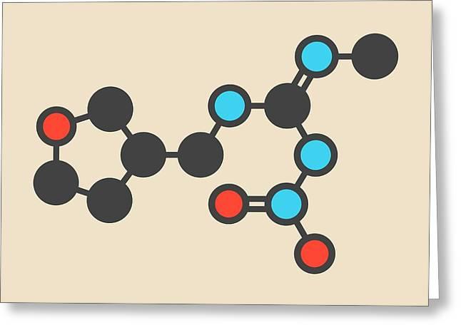 Dinotefuran Insecticide Molecule Greeting Card by Molekuul