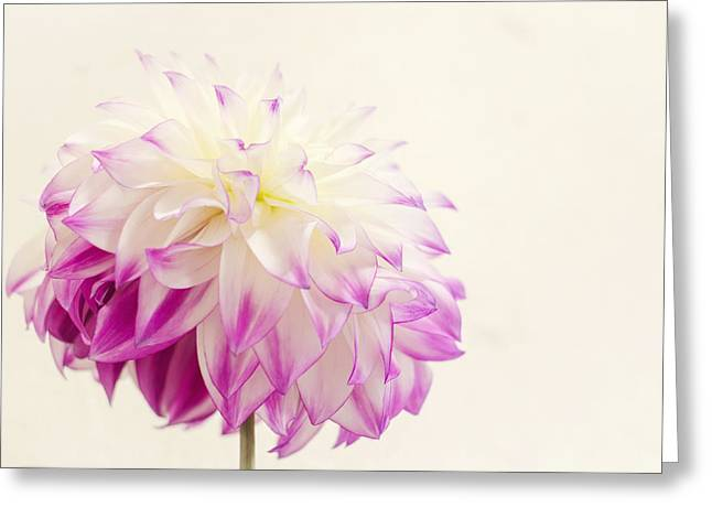 Dip Dyed Greeting Card by Heather Applegate