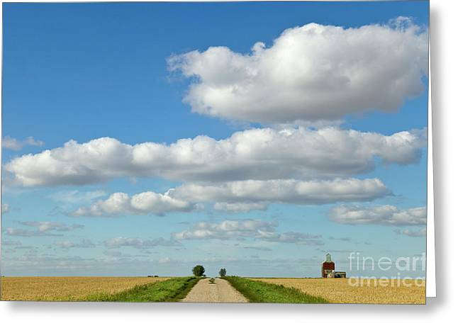 Dirt Road And Grain Elevator Williston Greeting Card
