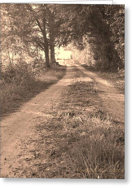 Dirt Road In Moultrie Georgia Greeting Card