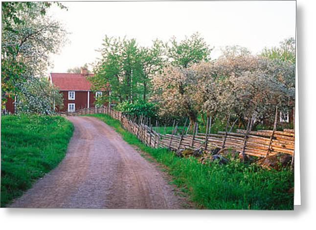 Dirt Road Leading To Farmhouses Greeting Card by Panoramic Images