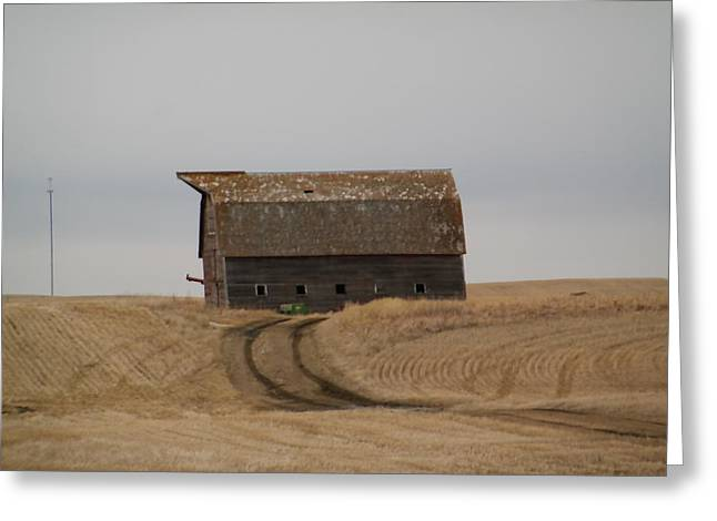 Dirt Road To An Old Leaning Barn Greeting Card by Jeff Swan