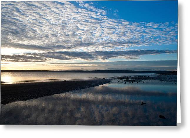 Discovery Park Evening Greeting Card by Mike Reid