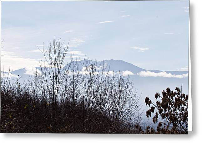 Distant Olympic Mountains - National Park Lands Greeting Card by Marie Jamieson