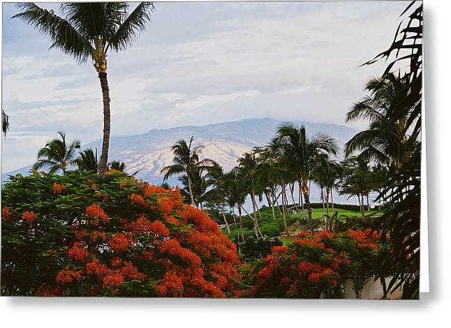 Greeting Card featuring the photograph Distant Volcano Lan 20 by G L Sarti