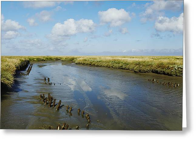 Ditch At The Foreshore Near Westerhever Greeting Card by Olaf Schulz