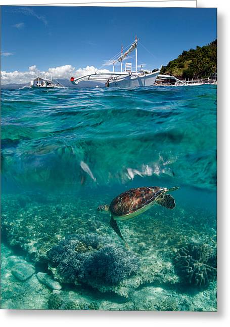 Dive To Philippines Greeting Card