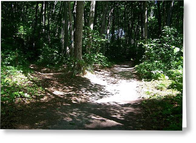 Diverging Path In The Woods Greeting Card