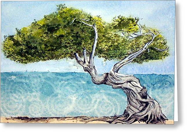 Divi Divi Tree Greeting Card