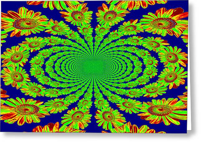 Greeting Card featuring the photograph Dizzying Daisies 2 by Kelly Nowak