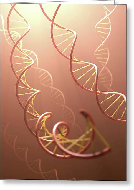 Dna Structure Greeting Card by Ktsdesign