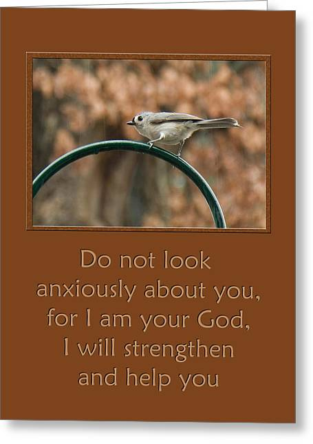 Do Not Look Anxiously About You Greeting Card by Denise Beverly