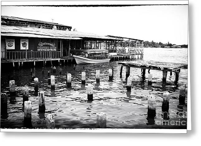 Docked At Bocas Greeting Card by John Rizzuto