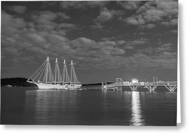 Docked Todd Greeting Card by Kristopher Schoenleber