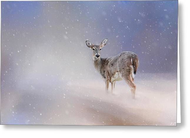 Doe In The Snow Greeting Card by Jai Johnson