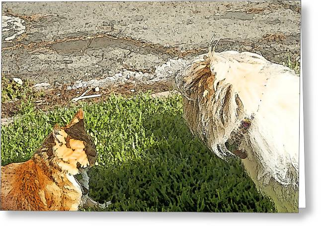 Dog And Cat Discuss Greeting Card by Artist and Photographer Laura Wrede