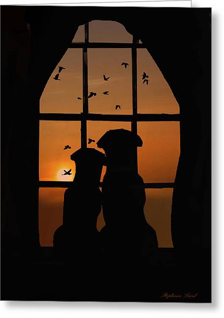 Dog Couple In Window Greeting Card by Stephanie Laird