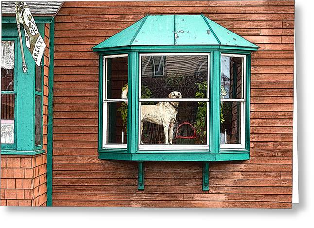 Dog In Window Greeting Card