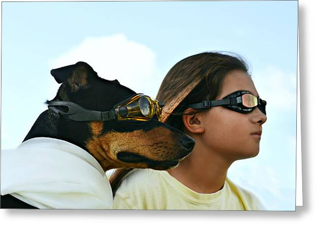 Dog Is My Co-pilot Greeting Card by Laura Fasulo