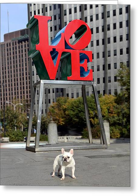 Dog Love Greeting Card by Lisa Phillips
