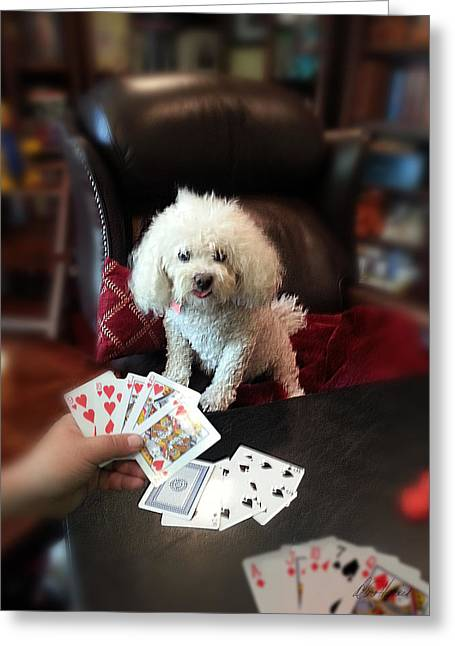 Dog Playing Poker Greeting Card by Diana Haronis